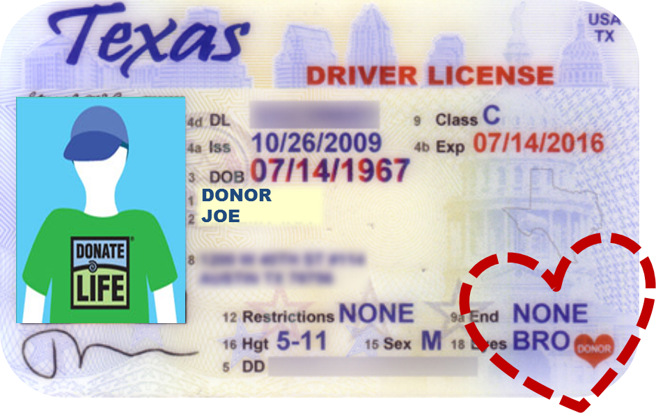 How to remove organ donor from drivers license california for What age do you need a fishing license in texas